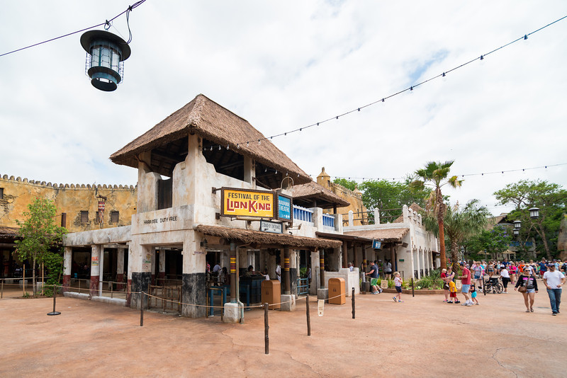 New Festival of the Lion King Theater in Disney's Animal Kingdom